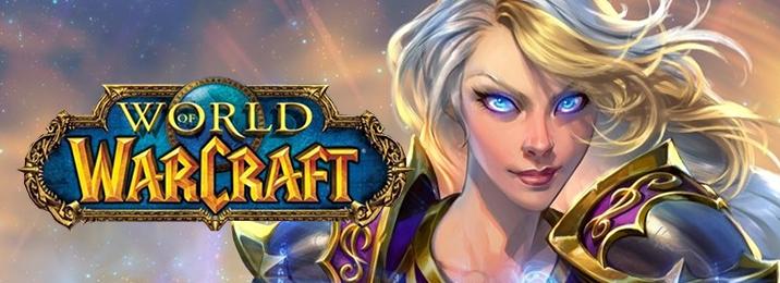 BlizzCon 2017 Default Wow Warcraft Banner